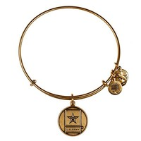 Alex and Ani U.S. Army Charm Bangle