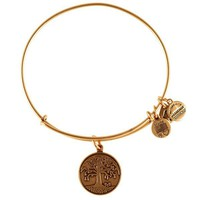 Alex and Ani Tree Of Life Charm Bangle - Russian Gold