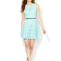 Alex + Alex Sleeveless Lace Fit and Flare Dress