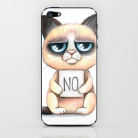 Grumpy cat iPhone & iPod Skin by Anna Syroed