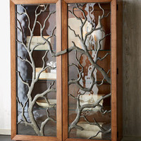 Tree Branch Display Cabinet