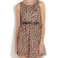 Jumpo Chocolate Cat Print Dress