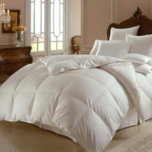 Downright Himalaya 800 White Goose Down Comforter - MRSIB-Comforter - Comforters & Duvet Fills - Bed & Bath