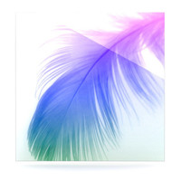 "Alison Coxon ""Feather Colour"" Luxe Square Panel 