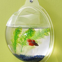 Wall Mount Fish Bowl Aquarium Ta...