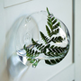 Alben Bubble Wall Vases
