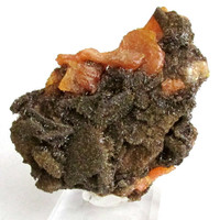 Mineral Specimen - Wulfenite, Vanadinite var. Endlichite - Erupcion Mine, Chihuahua, Mexico