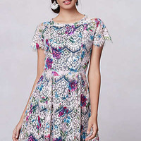 Anthropologie - Lacepaint Flared Dress