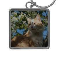 Sahara In A Tree Key Chain from Zazzle.com