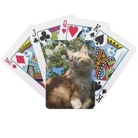 Sahara Cat in a Tree Playing Cards from Zazzle.com
