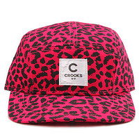 Crooks and Castles The No Love 5Panel Cap in Pink Black Cheetah : Karmaloop.com - Global Concrete Culture