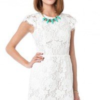 Sarafina Dress in White - ShopSosie.com