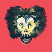 Lion Art Print by Dushan Milic