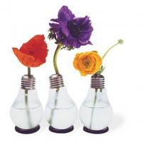 Blhbirne - Light Bulb Vase | Corpus Delicti Shop