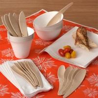 WASARA Picnic Kit  |  Eco-Friendly Tableware  |  BranchHome.com