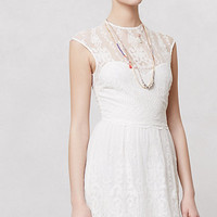 Kenna Lace Dress