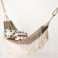 Tayrona Hammock