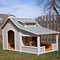 Outback Savannah Dog Home with Porch