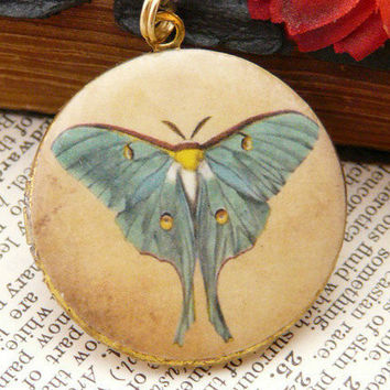 Luna Moth Butterfly Art Locket Pendant by QuaintandCurious on Etsy
