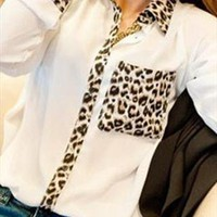 Leopard Print Long Sleeve Chiffon Shirt from alanchen