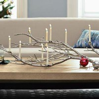 Manzanita Candelabra | west elm