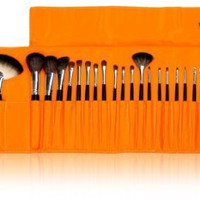 SHANY Cosmetics NY Collection Pro Brush Kit, 13 Ounce (22 Piece ZGF Pony and Raccoon Bristles with Orange Pouch)