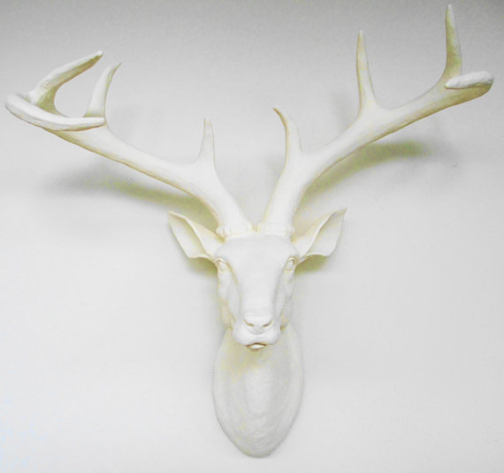 Ivory Deer Head Faux Taxidermy Stag From Hodi Home Decor
