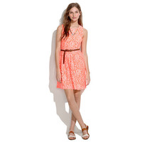 Lace Blossom Dress - waist defined dresses - Women's DRESSES - Madewell