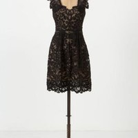 Luella Dress - Anthropologie.com