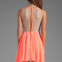 keepsake Golden Child Dress in Watermelon from REVOLVEclothing.com