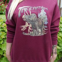 Dinosaur Triceratops Jumper, Sweatshirt, Sweater, Wildlife from WLC