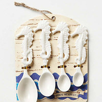 Anthropologie - Seahorse Measuring Spoons