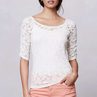 Anthropologie - Brushed Lace Pullover