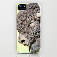 Bison iPhone & iPod Case by Irène Sneddon