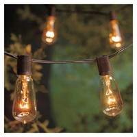 Smith & Hawken® String Lights - Filament Bulb (10ct)