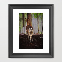 Deer © Framed Art Print by JUSTART
