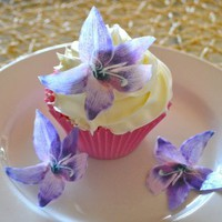 Edible Lily Flowers -Set of 12 - Cake and Cupcake Toppers, Decoration:Amazon:Everything Else