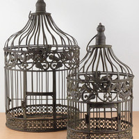 "Bird Cages Ivy & Eagle set of two 18"" & 13"" Brown Metal set of 2"