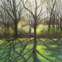 Forest Sunshine Giclee Fine Art Print on Archival by PoofyDove