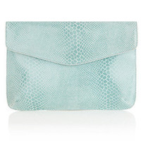 Oasis Shop | Pale Green Snake Print Clutch Bag | Womens Fashion Clothing | Oasis Stores UK