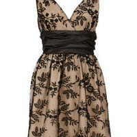 Cream waisted lace dress - View All - Dresses - Dorothy Perkins