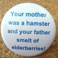 Your Mother was a Hampster and your Father Smelt of Elderberries! by BAYMOONSTUDIO