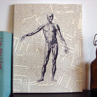 Canvas Literary Art Vintage Anatomical Drawing by Stoic on Etsy