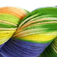 Hand Dyed Yarn Merino Wool Superwash DK by flickertailfibers