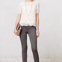 Elysian Lace Top