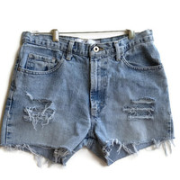 High Waisted Denim Shorts Distressed Jean Shorts Vintage Express Brand Tumblr Hipster