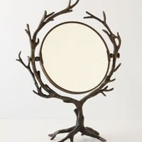 who&#x27;s the fairest mirror-Anthropologie.com