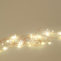 Firefly String Lights- Clear One