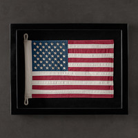 Framed Flag of United States