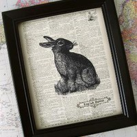 FREE Shipping English Rabbit Illustration  Vintage by kiintage